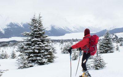 Consells de seguretat per la pràctica de l'esquí de muntanya